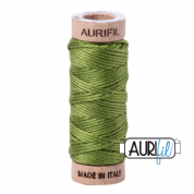 Aurifloss - 6-strand cotton floss - 2888 (Fern Green)